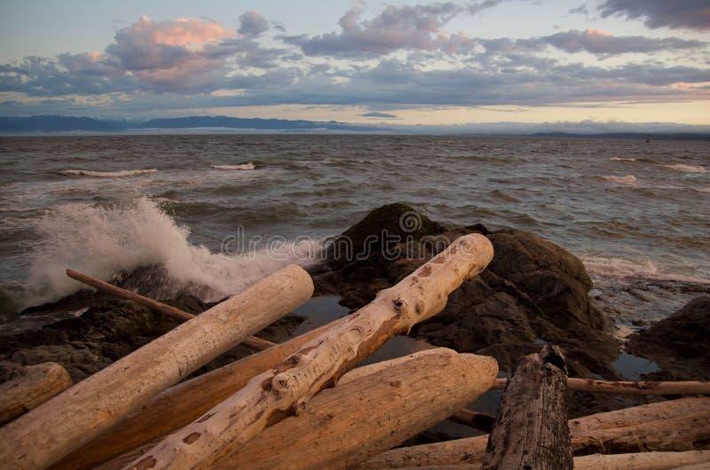 Sturmwellen brechen auf den Felsen vor Stapel von Treibholzklotz entlang der Ufergegend nahe Victoria, BC lizenzfreie stockbilder