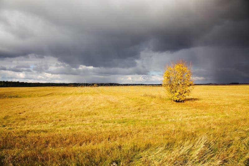Sturmwetter stockfoto