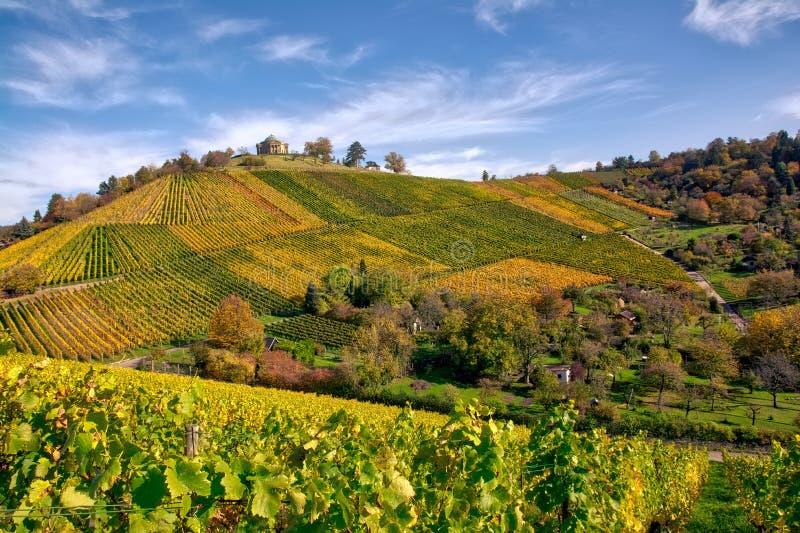 Stuttgart Germany Grabkapelle Vineyards Autumn Fall Season Beaut. Iful Landscape Farming Agriculture Wine stock image