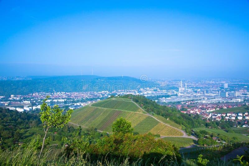 Stuttgart vingårdar royaltyfri bild