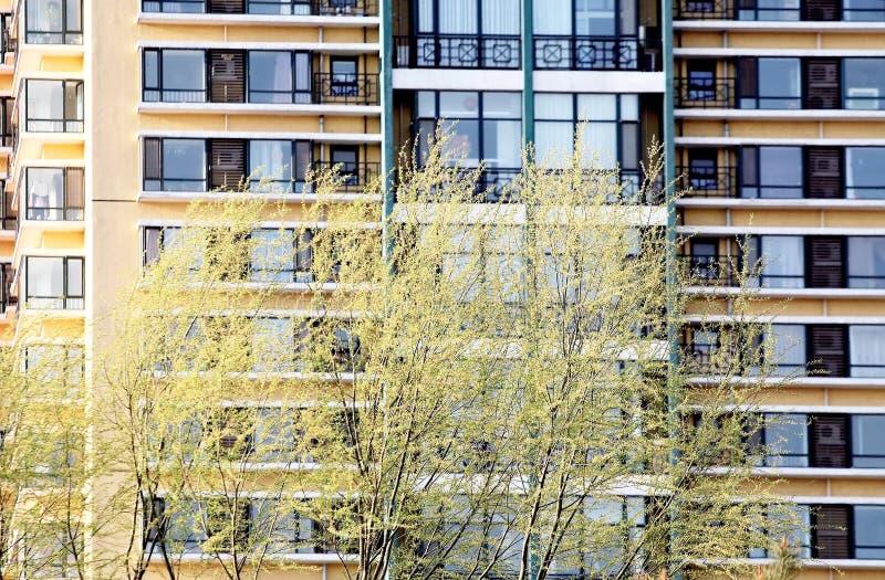 Stwarza Ognisko Domowe Mieszkaniową Wiosnę Obraz Stock