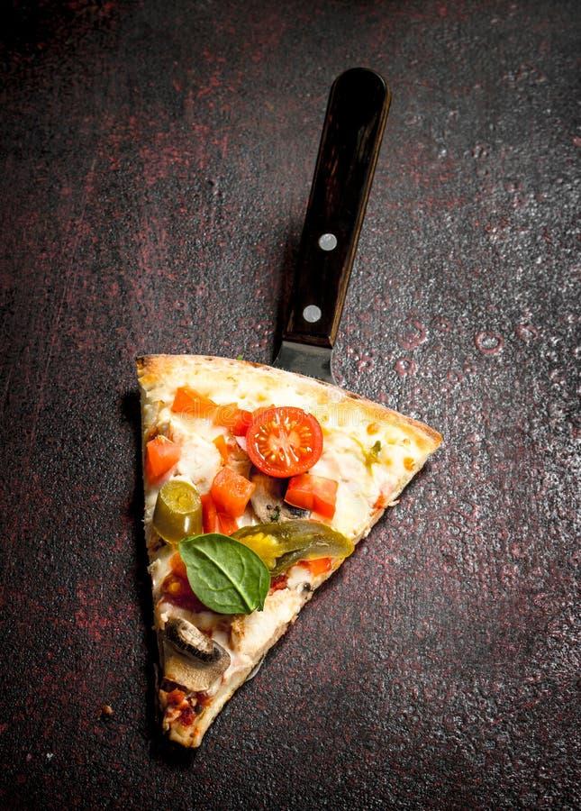 stycke av ny italiensk pizza royaltyfri foto