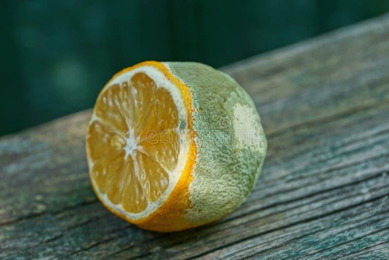 stycke av ruttna citronlögner på en grå trätabell fotografering för bildbyråer