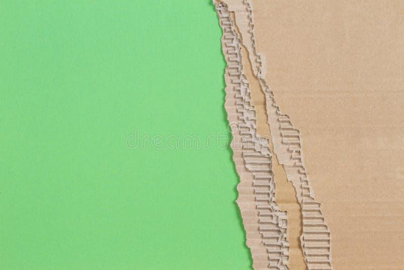 Stycke av wellpapp med den sönderrivna pappers- kanten på grön bakgrund royaltyfria bilder