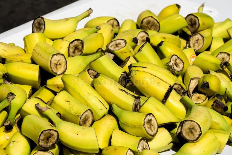 Stycken av klippta bananer royaltyfri fotografi