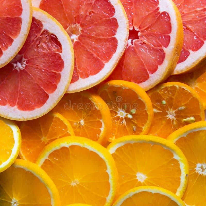Stycken av nya citrusfrukter (grapefrukt, mandarin, apelsinen) fotografering för bildbyråer
