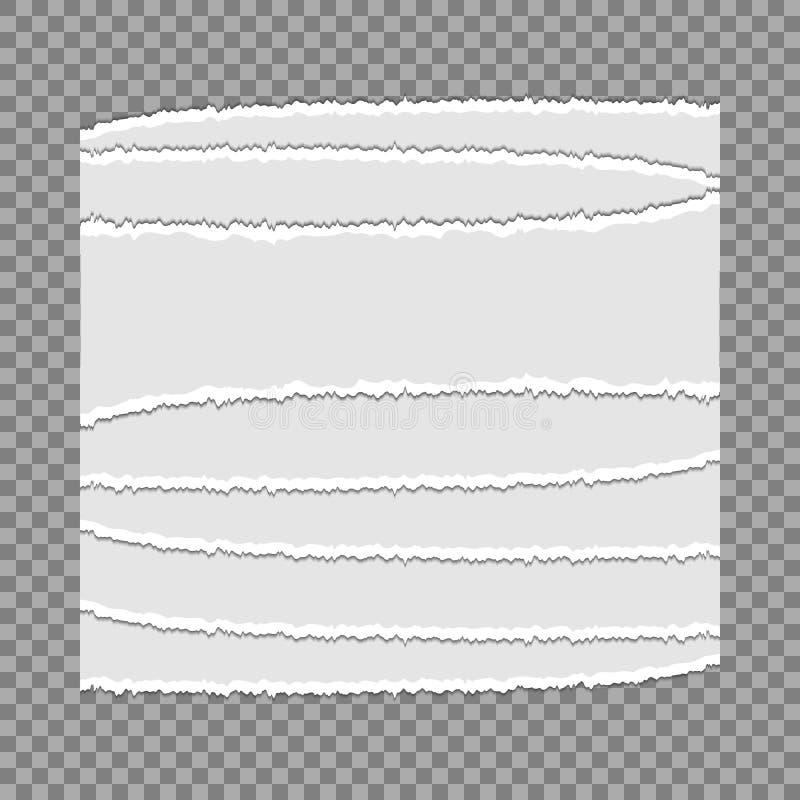 Stycken av sönderrivet papper på en genomskinlig bakgrund vatten för vektor för ny illustration för design ditt naturligt royaltyfri illustrationer