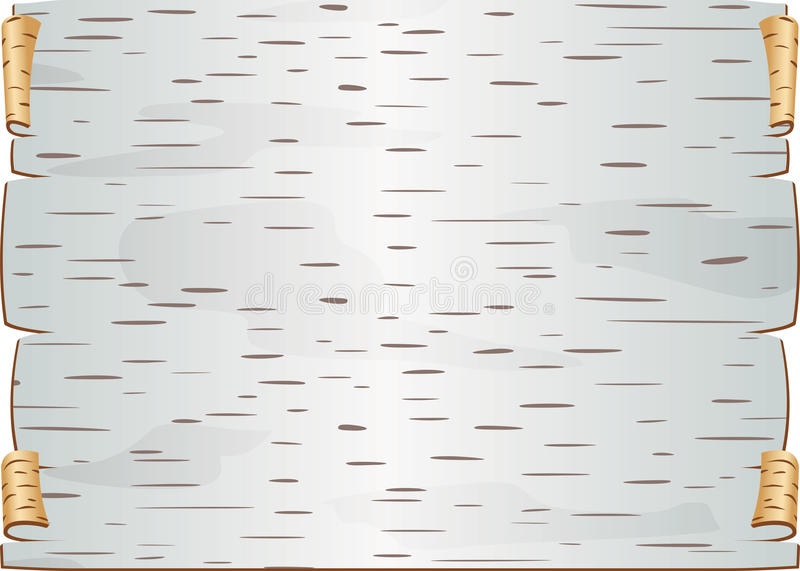 Stycket av björkskället vred och klirrade mellanrumet för epistle stock illustrationer