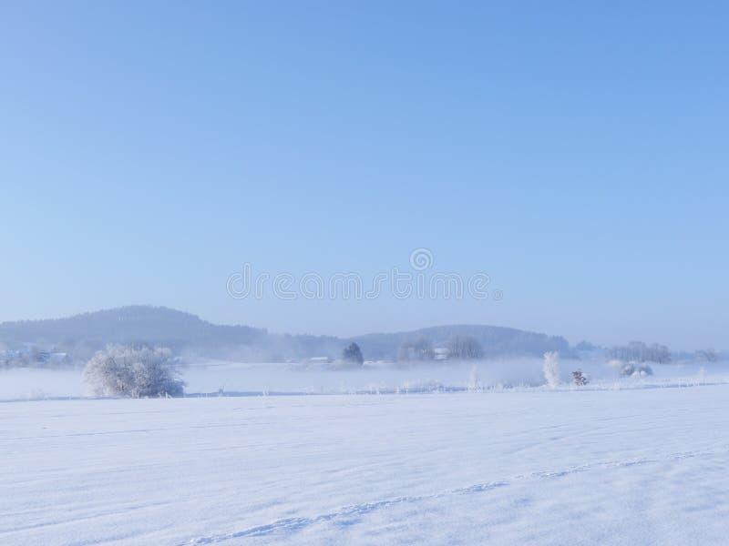 Styczeń 33c krajobrazu Rosji zima ural temperatury zdjęcie royalty free