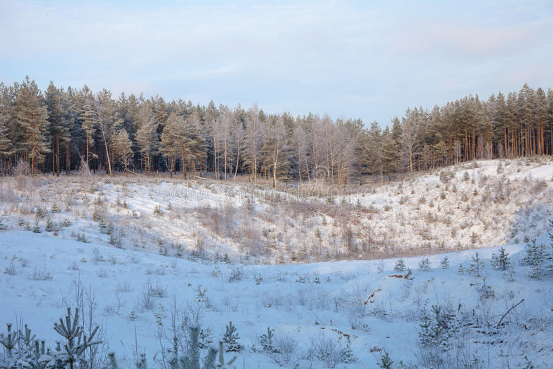 Styczeń 33c krajobrazu Rosji zima ural temperatury obrazy stock