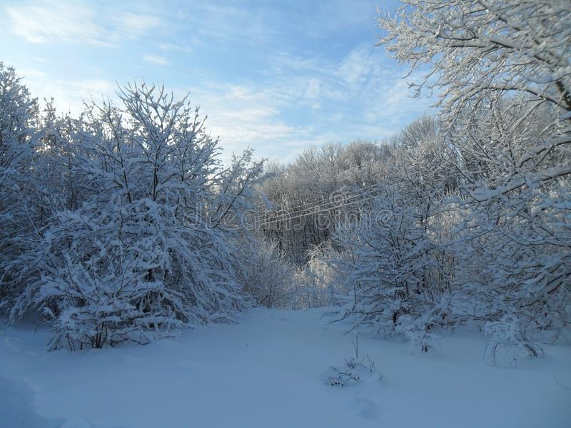 Stycze? 33c krajobrazu Rosji zima ural temperatury zdjęcia stock