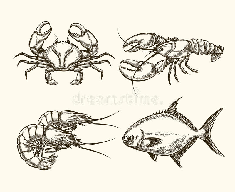 Style dessiné de fruits de mer de vecteur à disposition illustration libre de droits