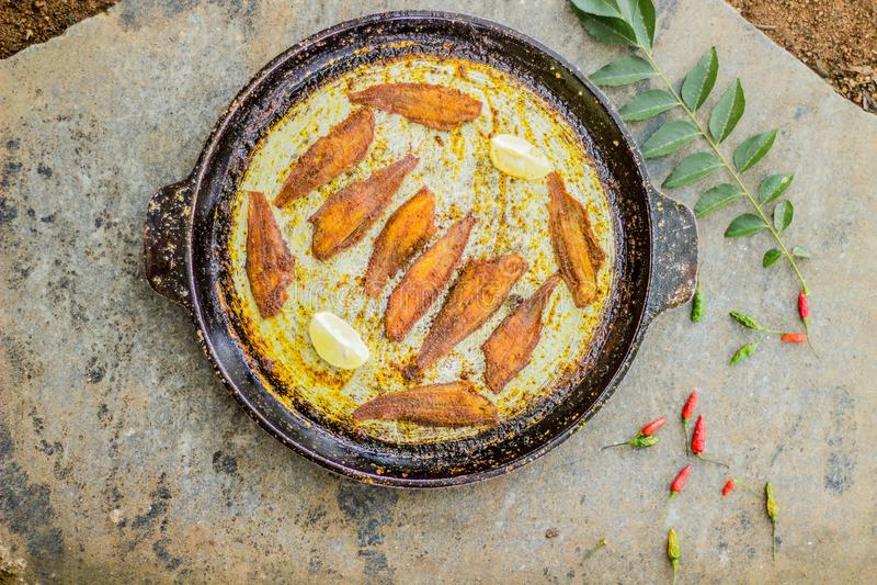 Style du Kerala de friture de poissons - photographie de nourriture image libre de droits