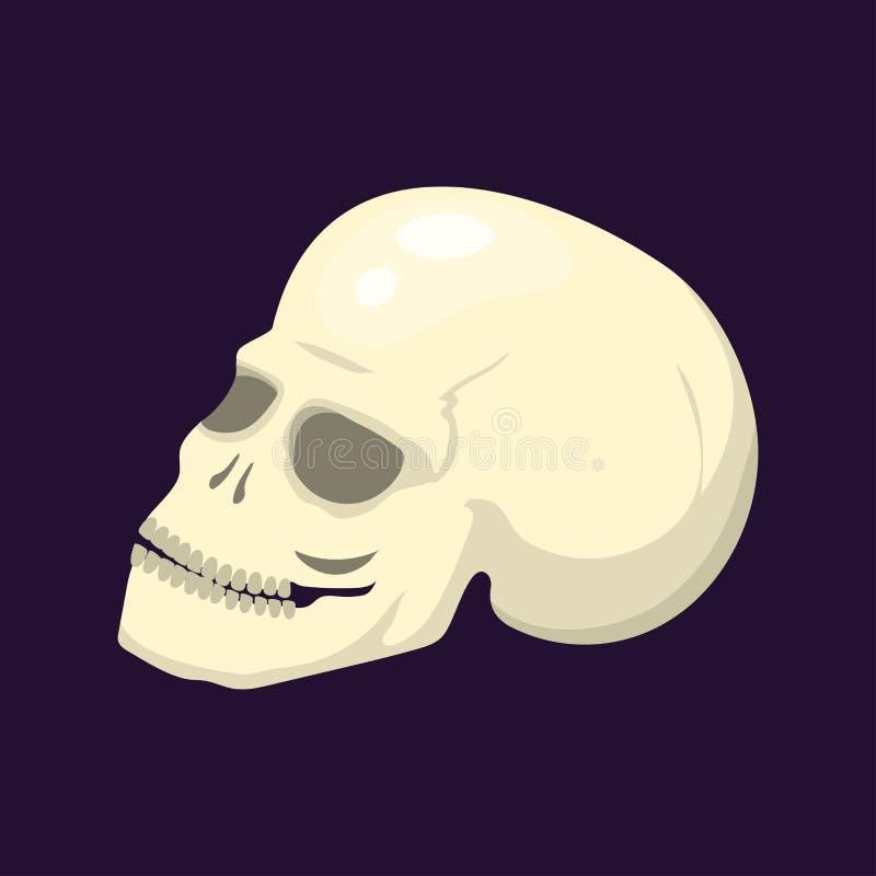 Style skull face halloween horror style tattoo anatomy art cartoon decoration gothic human skeleton symbol dead evil royalty free illustration