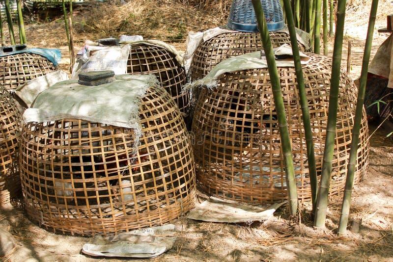 style thaïlandais de cage de poulet avec le coq de combat photographie stock