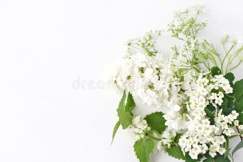 Styled stock photo. Decorative floral composition. Wild birthday bouquet of blossoming white nettle, lilac, cow parsley stock images