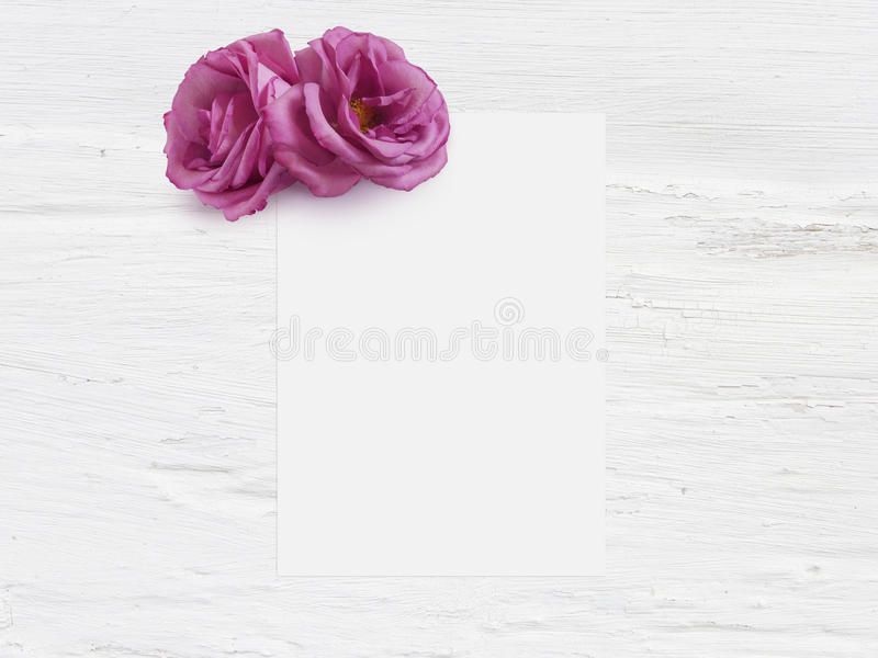 Styled stock photo. Feminine digital product mockup with rose flowers, blank list of paper and shabby white background stock photos
