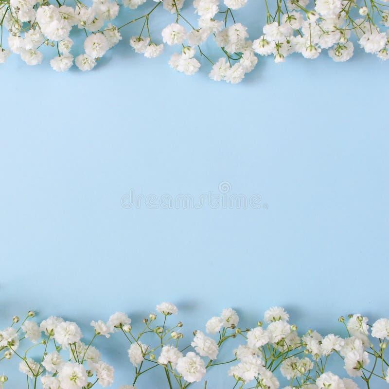 Styled stock photo. Feminine wedding desktop mockup with baby`s breath Gypsophila flowers on blue background. Empty royalty free stock images