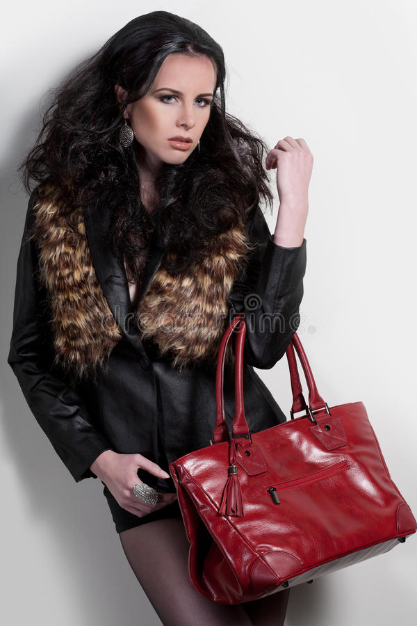 Download Styling Girl Royalty Free Stock Image - Image: 17357346