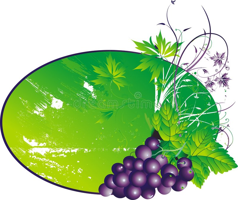 The stylised grapes stock illustration