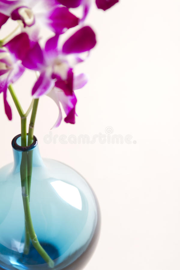 Stylised overhead image of vase and pink orchids stock photo