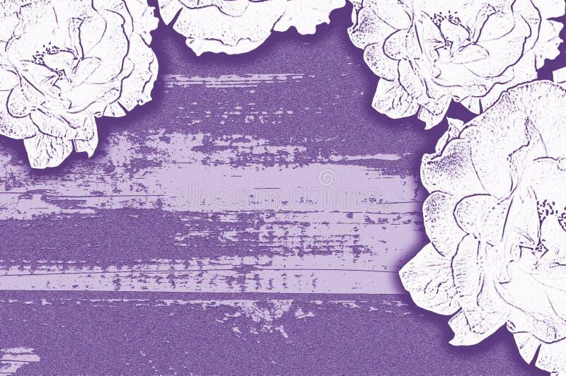 Light roses stylised purple background. Stylised purple background with border of several large outline light roses stock photography