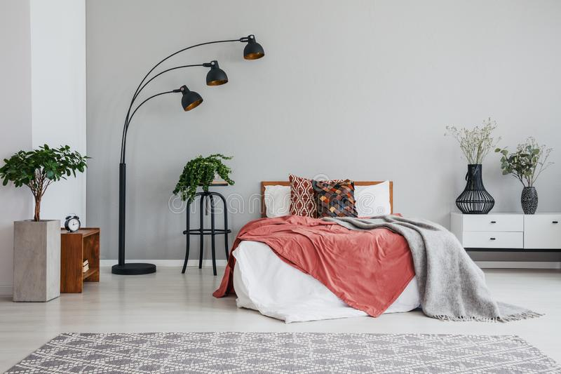 Stylish black lamp green plant bed with pillows and blanket and white bedside table in modern bedroom royalty free stock images
