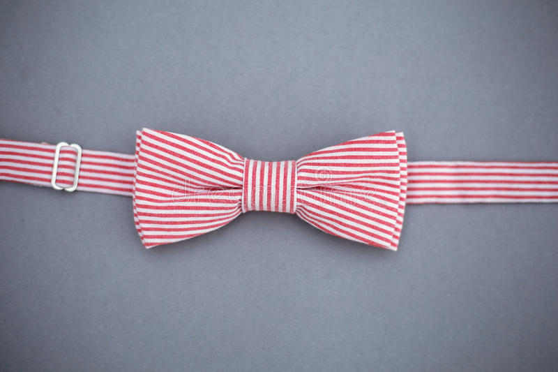 Stylish bowtie soft cloth ribbon. Classic groom accessories. Set of men`s stylish vintage. Male decoration for couple. Jewelry for man. Groom`s morning stock image