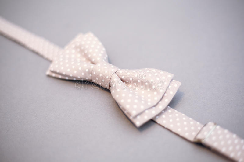 Stylish bowtie soft cloth ribbon. Classic groom accessories. Set of men`s stylish vintage. Male decoration for couple. Jewelry for man. Groom`s morning stock photography
