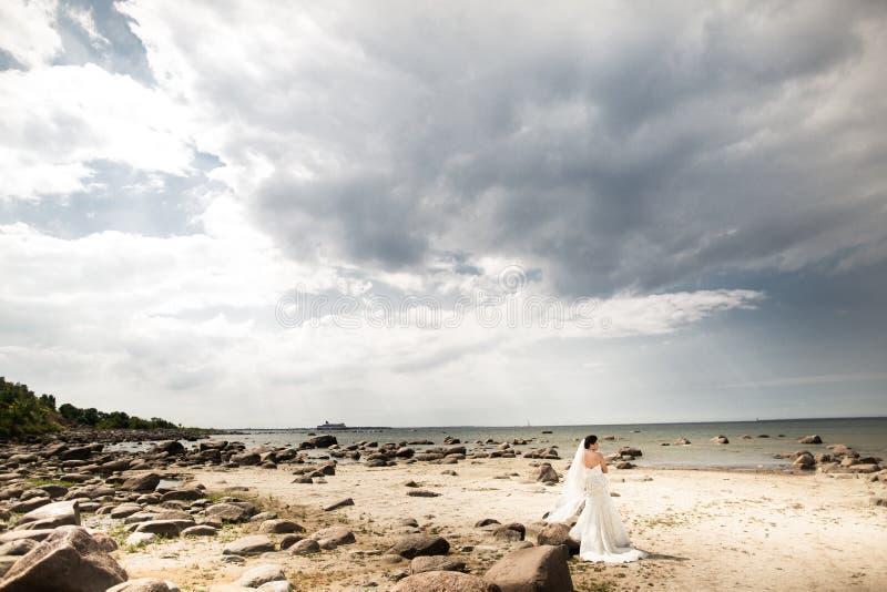 Stylish bride standing back on beautiful landscape of sea royalty free stock image