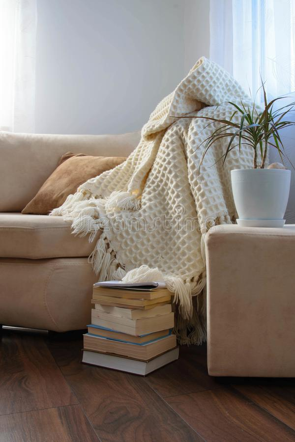 Stylish brightly interior of living room. Inviting comfortable sofa with handmade woolen blanket, books and potted plant. royalty free stock images