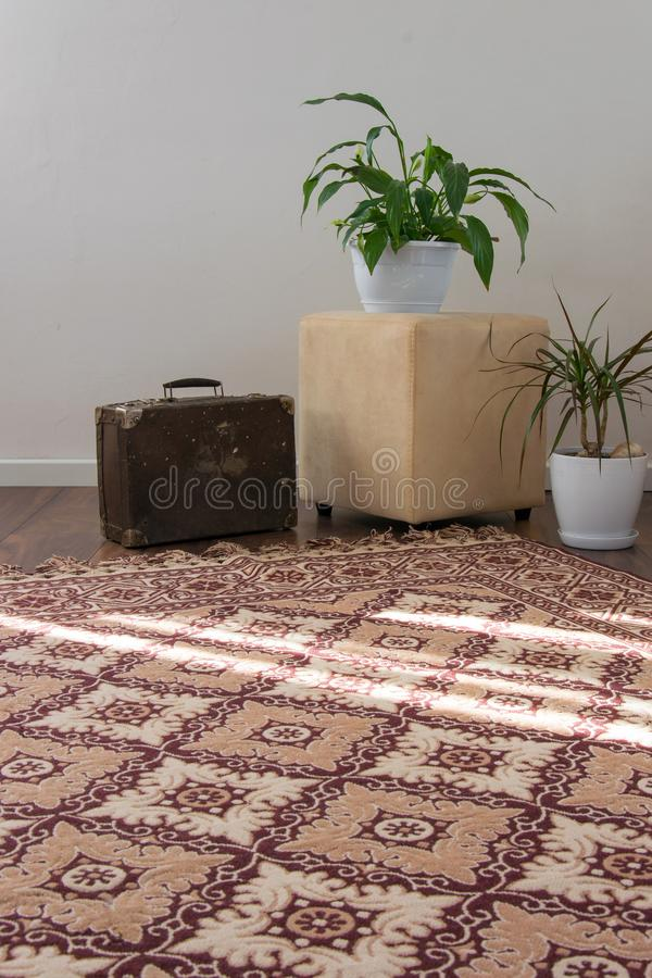 Stylish brightly part of living room with old vintage suitcase and potted plants, traditional handmade carpet. On luxury wooden floor, white wall with bright royalty free stock photography