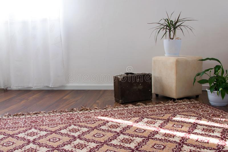 Stylish brightly part of living room with old vintage suitcase and potted plants, traditional handmade carpet. On luxury wooden floor, white wall with bright stock photography