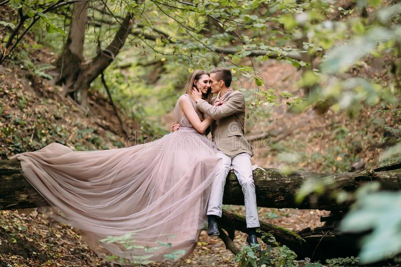 Stylish couple are relaxing on a plaid and sitting on the log. Bride and groom with dreadlocks are posing on nature. royalty free stock photo