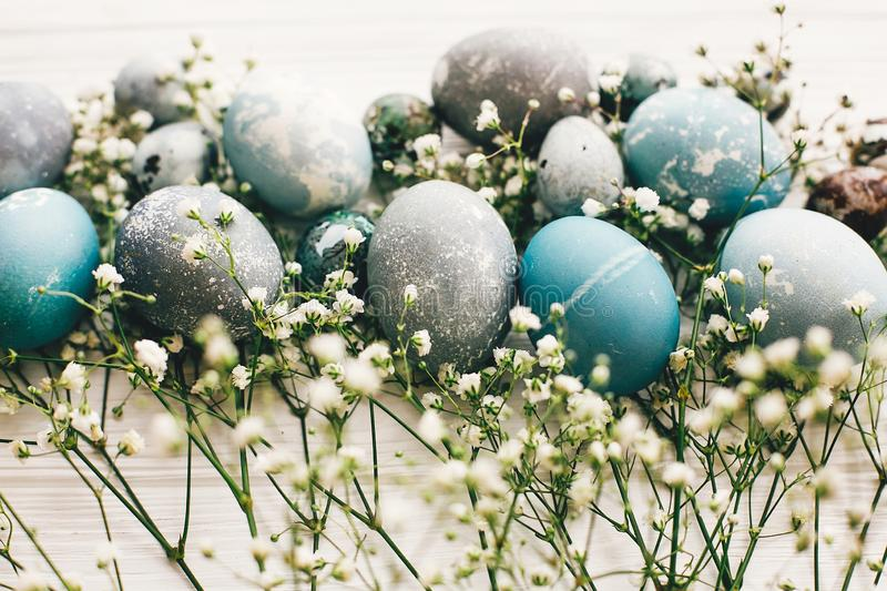 Stylish easter eggs with spring flowers on white wooden background. Modern easter eggs painted with natural dye in blue, grey stock images