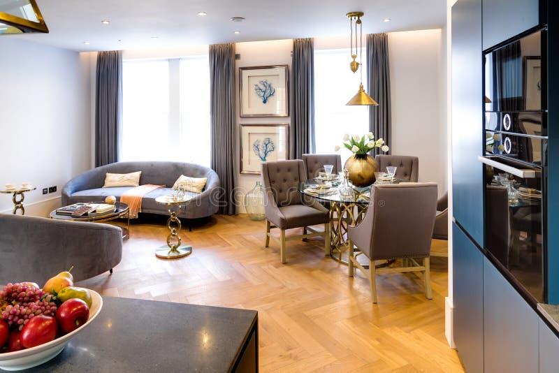 Stylish and Elegant Home with Kitchen. Stylish and Elegant Home Living Room with Kitchen royalty free stock images