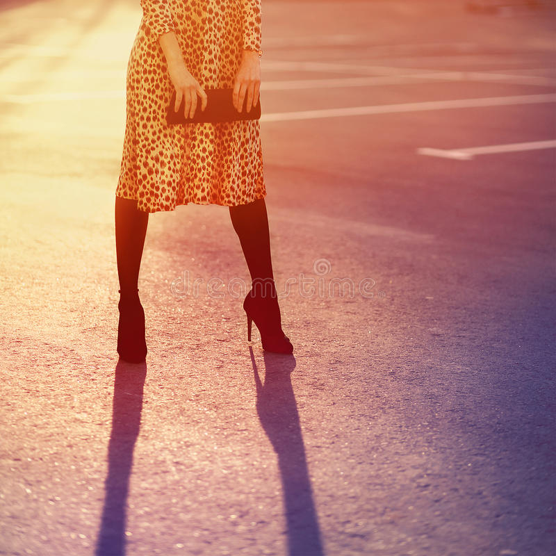 Stylish fashion concept, elegant pretty woman in leopard dress royalty free stock images