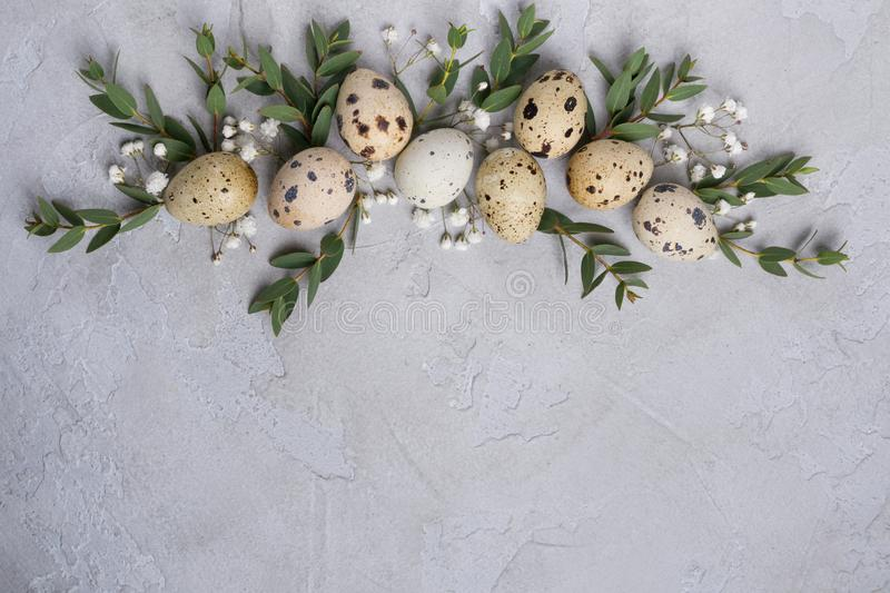 Stylish Frame background with quail easter eggs and leaf sprigs of eucalyptus. On concrete background with place for text. Stylish Frame background with quail royalty free stock image