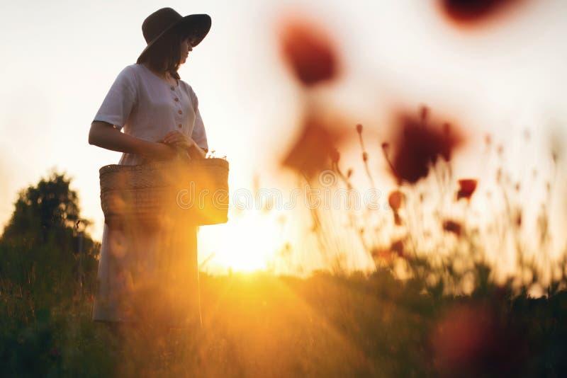 Stylish girl in linen dress gathering flowers in rustic straw basket, walking in poppy meadow in sunset. Boho woman in hat stock photos