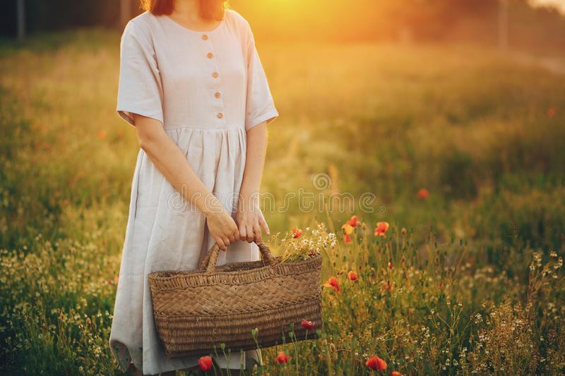 Stylish girl in linen dress holding rustic straw basket with poppy flowers in meadow in sunset light. Boho woman relaxing and royalty free stock photo