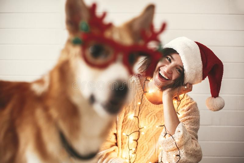 Stylish girl smiling in santa hat and christmas lights and looking at cute golden dog with funny emotions in festive reindeer. Glasses with antlers. Merry stock images
