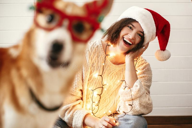 Stylish girl smiling in santa hat and christmas lights and looking at cute golden dog with funny emotions in festive reindeer. Glasses with antlers. Merry stock photo