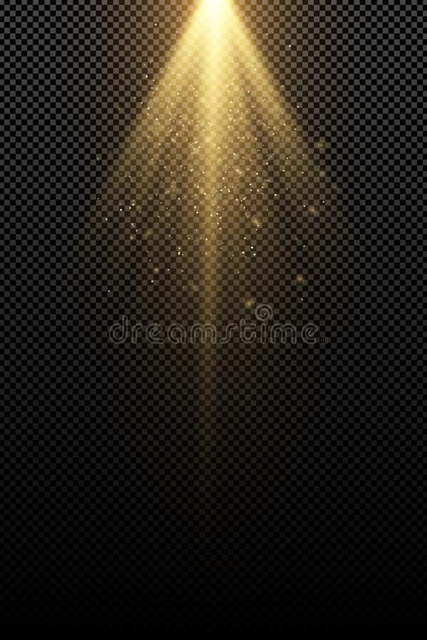 Stylish gold light effect isolated on a transparent background. Golden rays. Lamp beams. Flying golden magical dust. Sunlight. vector illustration
