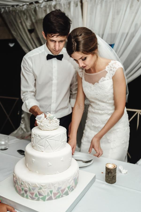 Stylish gorgeous bride and elegant groom cutting and tasting un royalty free stock photography