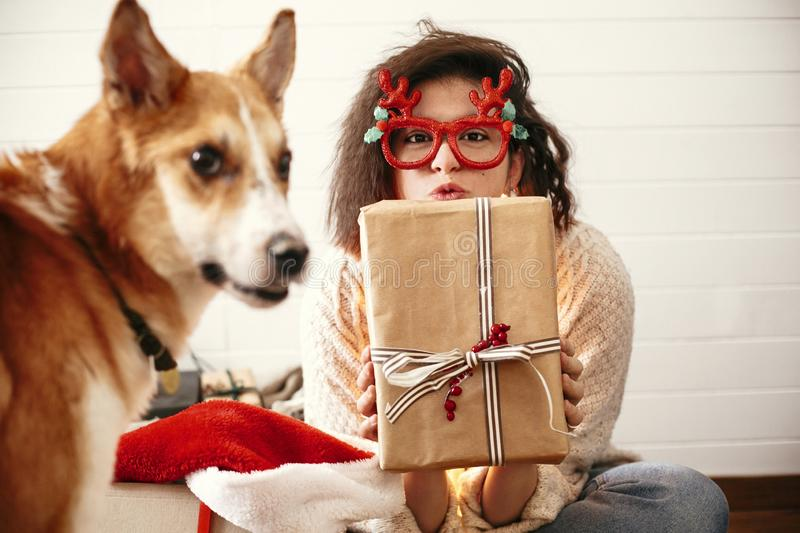 Stylish happy girl with christmas gift box in christmas lights and smiling to cute golden dog. Young woman in festive glasses with stock photography