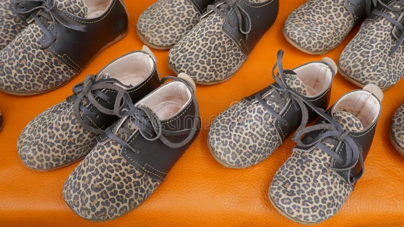 Stylish lace-up leopard print shoes for trendy, little girls. Flat girl shoes with leopard pattern stock images