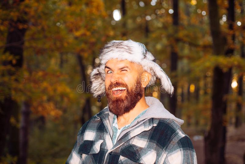 Stylish male wearing plaid shirt and ear-flaps fur cap at autumn fall yellow trees background. Crazy bearded man wink at stock image