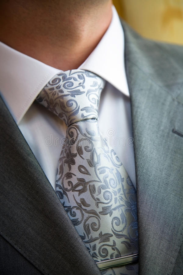 Download Stylish Man In A Suit And Tie Stock Image - Image: 13675491