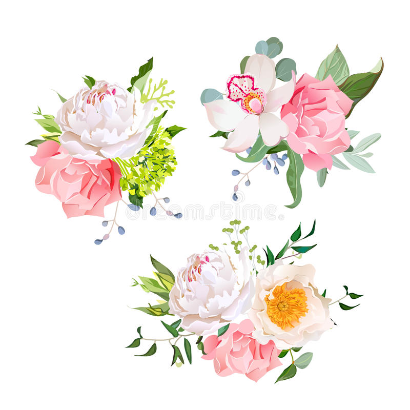 Stylish mix of flower bouquets vector design set royalty free illustration