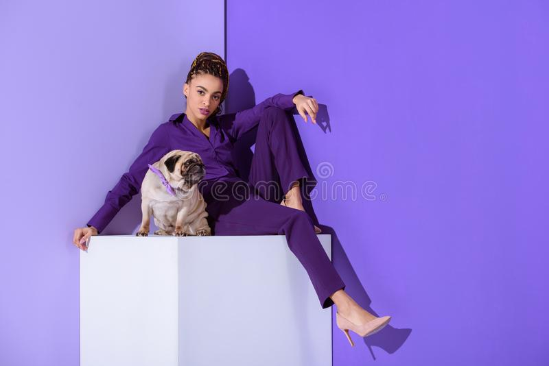 Stylish mulatto girl in purple suit sitting on cube with pug dog, ultra violet. Trend stock photo